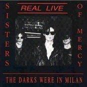 The Darks Were in Milan