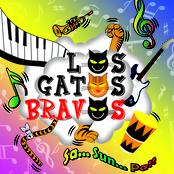 Musica de LOS GATOS BRAVOS