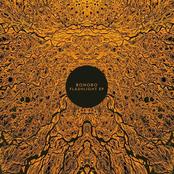 album Flashlight by Bonobo