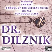 Dr Dilznik
