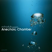 Echodub: Anechoic Chamber