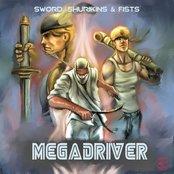 Sword, Shurikins & Fists