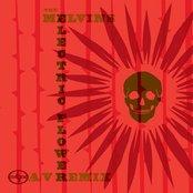 Scion A/V Remix:Electric Flower