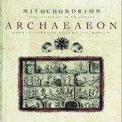 Archaeaeon