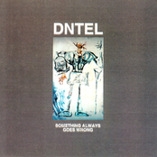 album Something Always Goes Wrong by Dntel