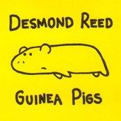 Guinea Pigs EP