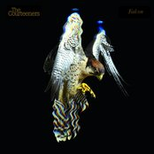 Falcon [Bonus Disc]
