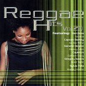 Reggae Hits Vol. 20