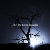 What the Blood Revealed EP2