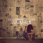 Animals single