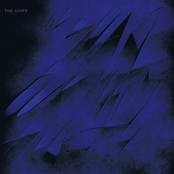 album We Share Our Mothers' Health by The Knife