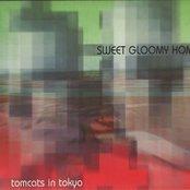 Sweet Gloomy Home