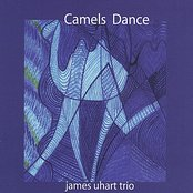 Camels Dance