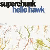 Hello Hawk