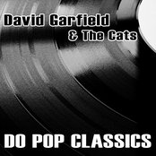 David Garfield & The Cats Do Pop Classics