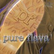 Pure Gospel - Pure Flava'