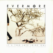 album It's Too Late by Evermore vs. Dirty South