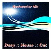 November 2008 :: Cut 1 :: Bushwacker Mix