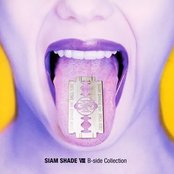 Siam Shade VIII B-side Collection