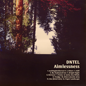 album Aimlessness by Dntel