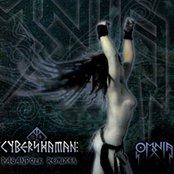 Cybershaman
