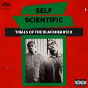 Trials of the Blackhearted