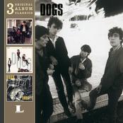 album 3 CD Original Classics by Dogs