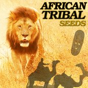 African Tribal Seeds