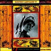 Elactric Ladyland VI