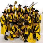 Musica de Banda Machos