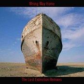 The Last Extinction Remixes