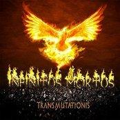 Transmutationis