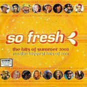 So Fresh: The Hits of Summer 2003 plus The Biggest Hits of 2002 (disc 1)