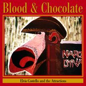 Blood & Chocolate