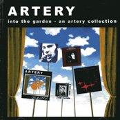 Into the Garden: An Artery Collection