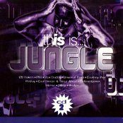 This Is Jungle (disc 2)