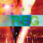 The R.E.G Project III