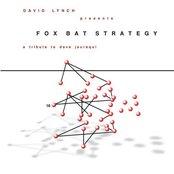 Fox Bat Strategy