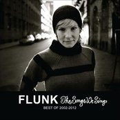 The Songs We Sing - Best of Flunk 2002-2012