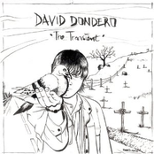 album The Transient by David Dondero
