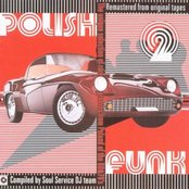 Polish Funk Vol 2