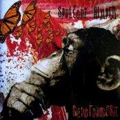 Sudetenmusic (2007)