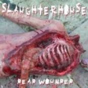 Dead Wounded