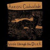 Wade through the Dark