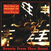 album Beauty From Thee Beast (Thee Best Ov Psychic TV) by Psychic TV