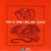 Deep Elm Sampler No. 5 - This Is How I Kill My Tears