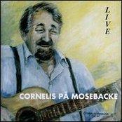 Cornelis live på Mosebacke