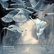 Seven Swans Reimagined