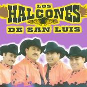 Musica de Los Halcones De San Luis