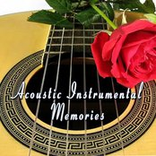 Acoustic Instrumental Memories